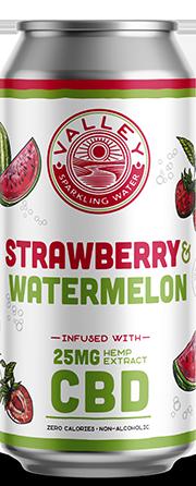 STRAWBERRY WATERMELON single can
