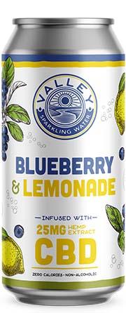 Blueberry Lemonade can